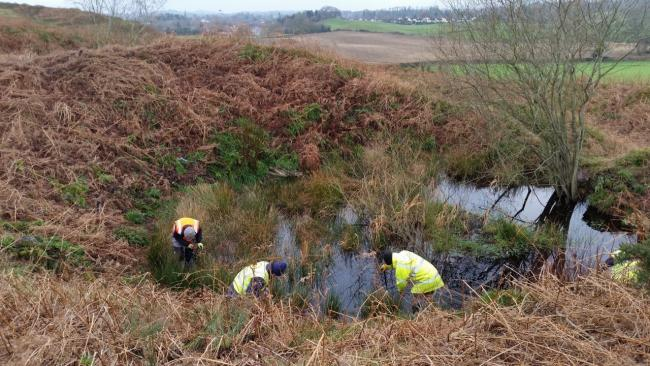 Hillfort landscape management is the on the agenda next month
