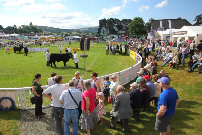A general view of the show ring at the Royal Welsh Show at Llanelwedd last year.