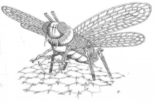 Plans for the Bee monument
