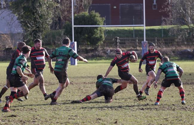 Oswestry rugby on the attack against Marple