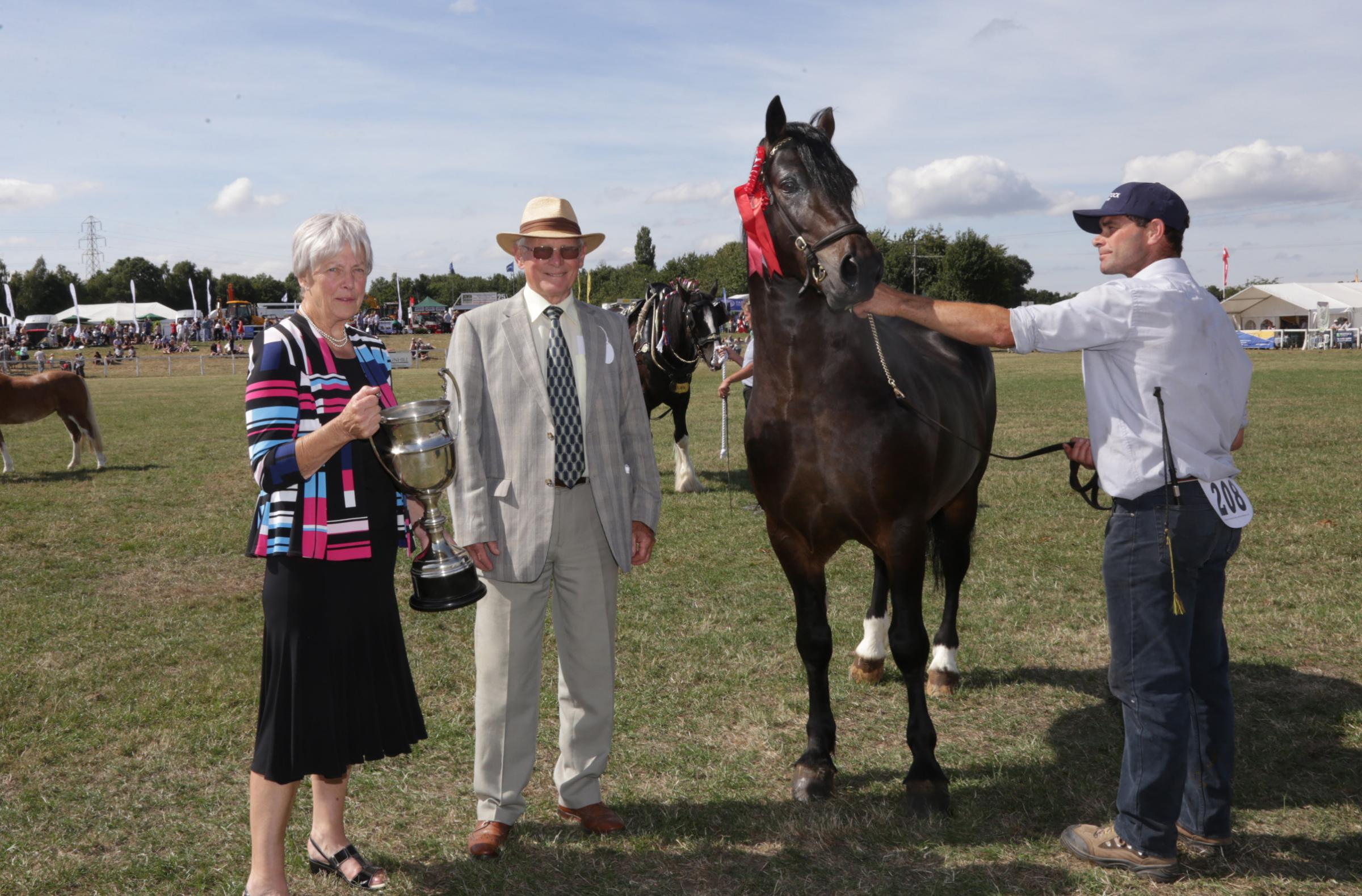 show president Neil Brogden and his wife Margaret present Andrew Anderson  with the Welsh Cob section  D