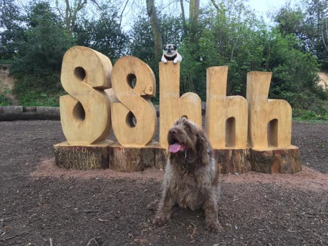 Puggle and Bolli enjoying the new sculpture. Picture courtesey of Ricky Roberts and Lou Baines